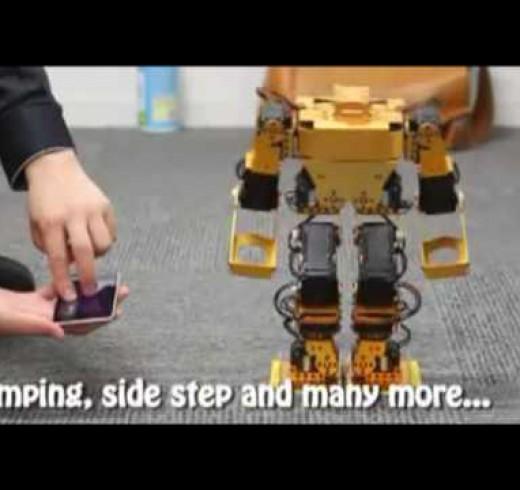 «Walky» – новый концептуальный метод управления шагающими роботами