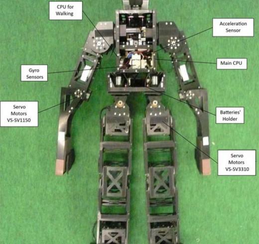 CITBrains-TeenSize-Robot