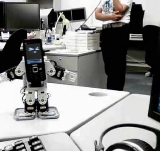 CALLO & CALLY – телефонные роботы