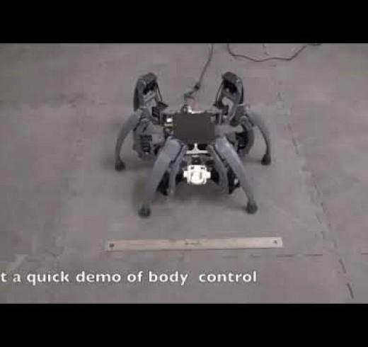 Робот-паук, который сам учится ходить
